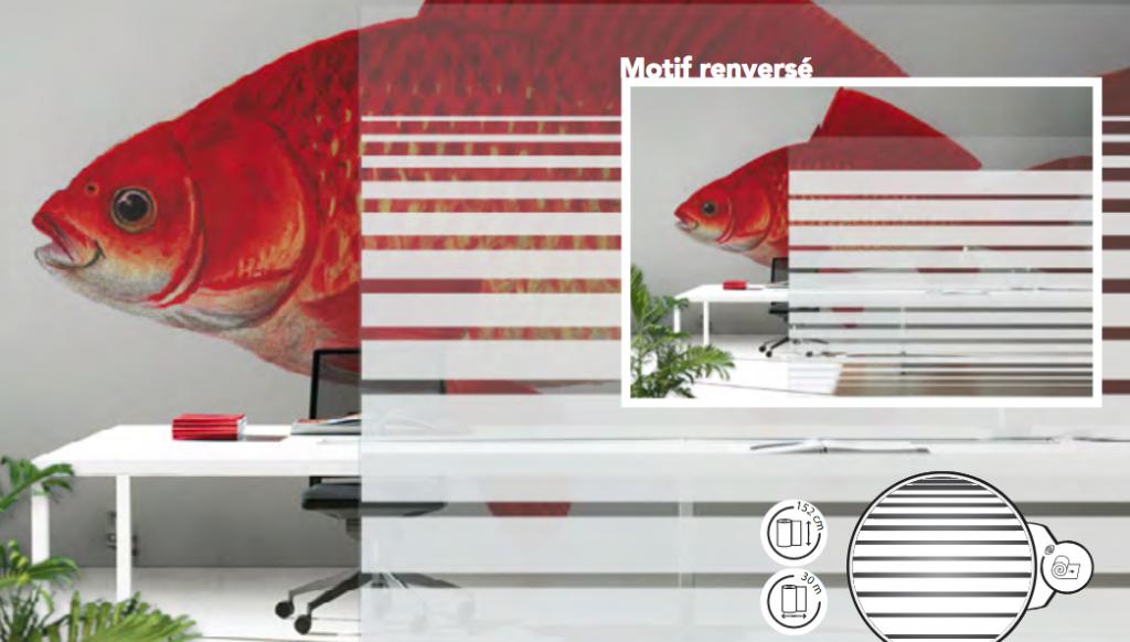 Exemple d'adhésifs dépolis décoratifs intérieurs dans un bureau